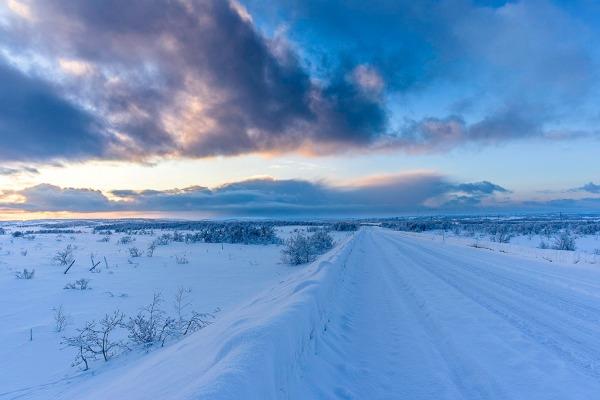 Artic Roads