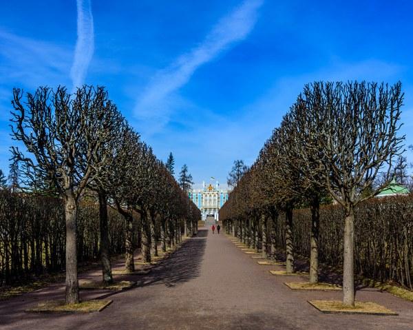 Tsarskoe Tselo Park