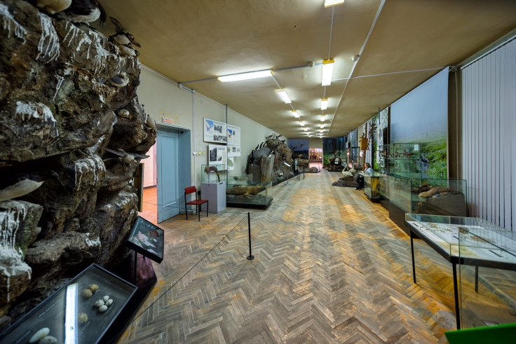Murmansk Regional Museum of Local Lore 4